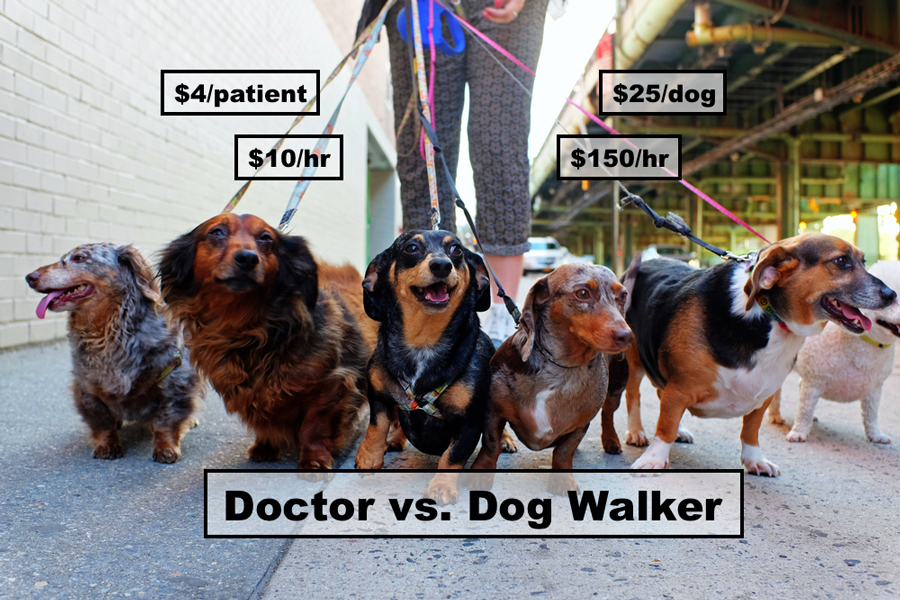 Doctors earns more as dog walker
