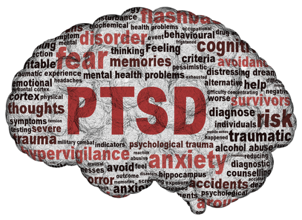 diagnosing holden with ptsd